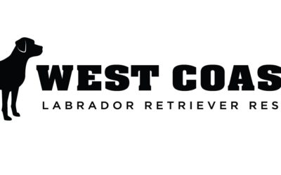 West Coast Labrador Retriever Rescue